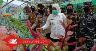 Wakil Walikota Palembang Fitrianti Agustinda tinjau kampung sayur di Bukit Kecil, Selasa (17/6/2020). FOTO :VIRALSUMSEL.COM