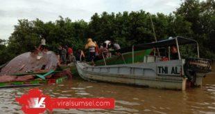 sebuah kapal Cargo Vung Hai berbendera Panama IMO 8342375 atau MT Patra Tanker menabrak Kapal Motor Sungai (KMS) atau Jukung MS Anugerah. FOTO : VIRALSUMSEL.COM