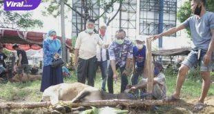 MF Ridho, ST, MT Sekretaris DPD Partai Demokrat Sumsel saksikan penyembelihan hewan qurban di Masjid Al-Hasyim. FOTO : ARRA/VIRALSUMSEL.COM