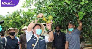 Gubernur Sumatera Selatan H Herman Deru. FOTO :VIRALSUMSEL.COM