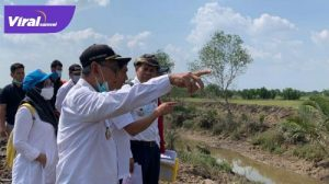Wakil Bupati Banyuasin H. Slamet Somosentono SH, meninjau Proyek Rehabilitasi Daerah Irigasi Rawa, Desa Sebalik, Rabu (7/7/2021). Foto : viralsumsel.com/lam