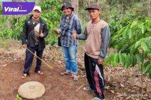 Batu Tiang situs megalitik di Desa Geramat Kecamatan, Mulak Ulu, Kabupaten Lahat. Foto : viralsumsel.com/oki