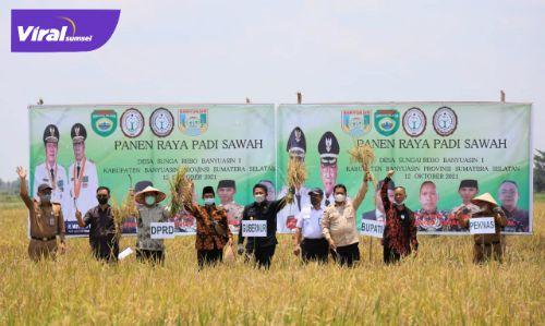Gubernur Sumsel H Herman Deru didampingi Bupati Banyuasin Askolani panen raya padi di Desa Sungai Rebo, Selasa, (12/10/2021). Foto : viralsumsel.com/lam